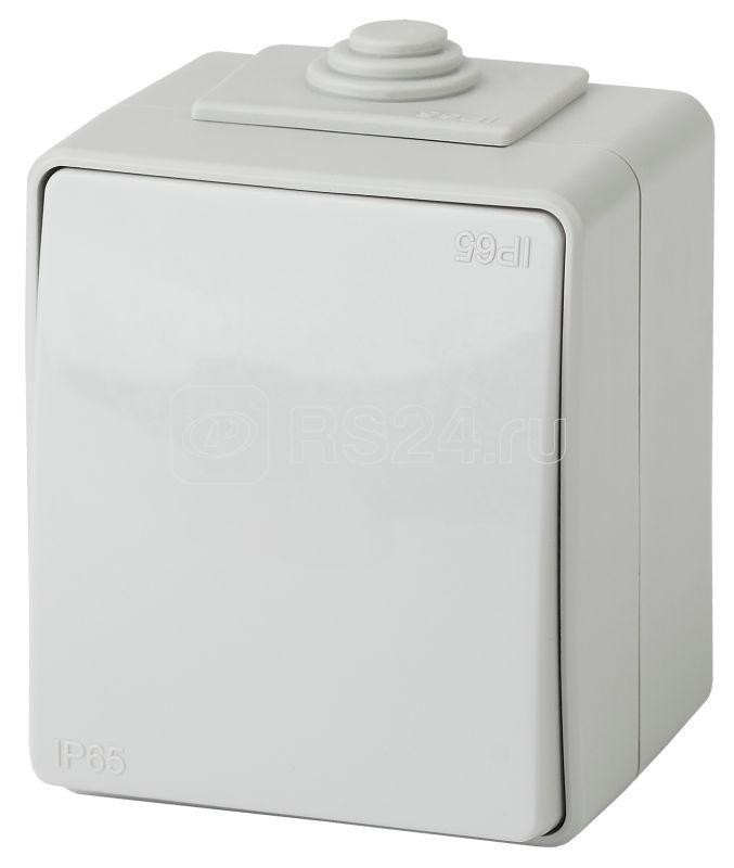 Выключатель 1-кл. ОП Эра Эксперт 10А IP65 11-1601-03 250В 10AX сер. Эра Б0035972 купить в интернет-магазине RS24