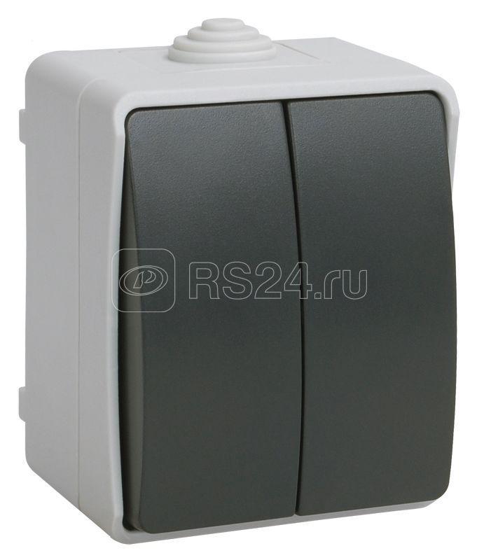 Выключатель 2-кл. ОП Форс 10А IP54 ВС20-2-0-ФСр сер. IEK EVS20-K03-10-54-DC купить в интернет-магазине RS24