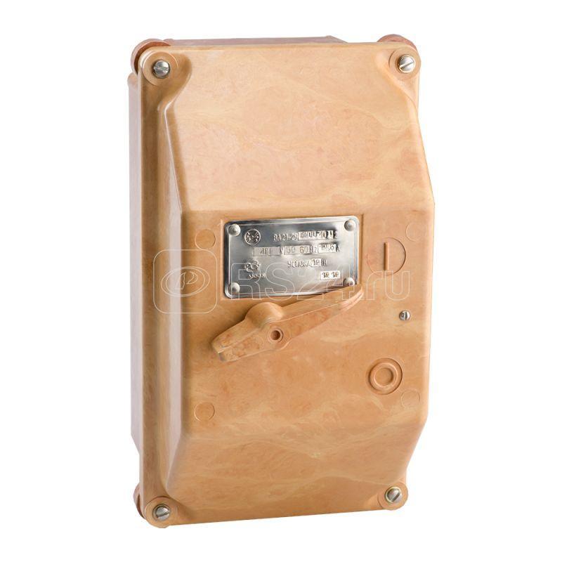 Выключатель автоматический 100А 12Iн ВА21-29-320010 У2 400В AC IP54 КЭАЗ 100436 купить в интернет-магазине RS24