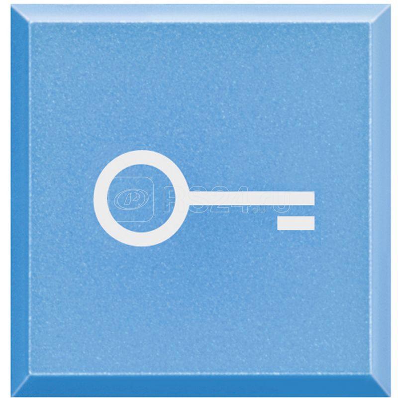Клавиша сменная с символами для кнопок с подсветкой HC-HS-4038LA/Ключ Axolute Leg BTC H4920LF купить в интернет-магазине RS24