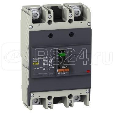 Выключатель автоматический 2п 2т 100А 36кА/415В EZC250 SchE EZC250H2100 купить в интернет-магазине RS24