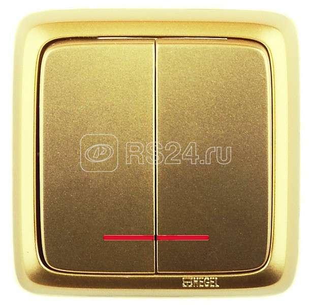 Выключатель 2-кл. ОП Альфа 10А IP20 250В с индик. с изолир. пластиной зол. HEGEL ВА10-154-07 купить в интернет-магазине RS24