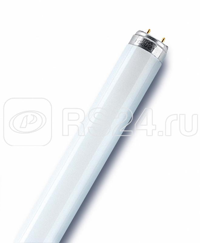 Лампа люминесцентная L 36W/765 36Вт T8 6500К G13 смол. OSRAM 4008321959836