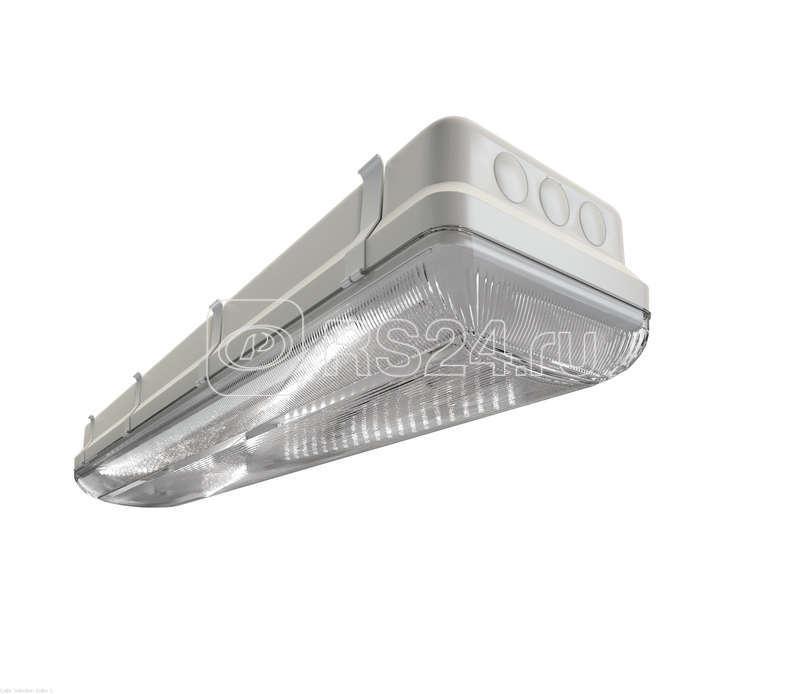 Светильник ДСП TL-ЭКО 236/30 PR IP65 (S5E) 5K БАП 30 Технологии Света УТ000005769 купить в интернет-магазине RS24